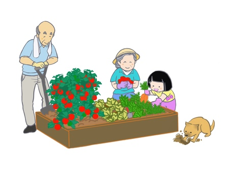 Home gardening 2