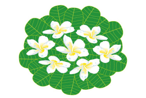 Plumeria flower and leaf icon