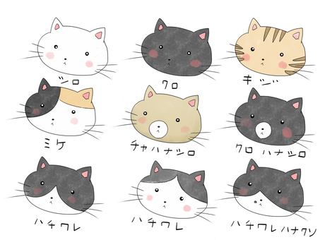 Various patterns of cats