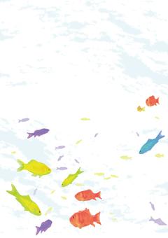 화려한 물고기 카드