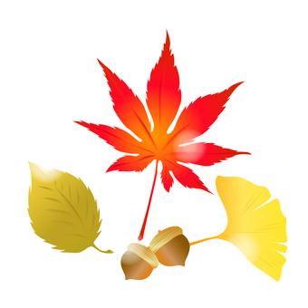 Autumn motif -5