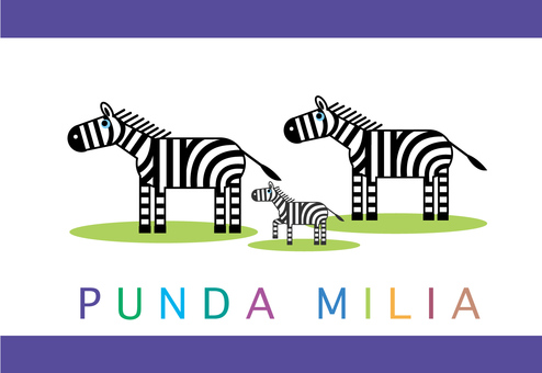 zebra_ zebra