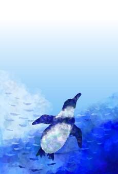 Swim penguin