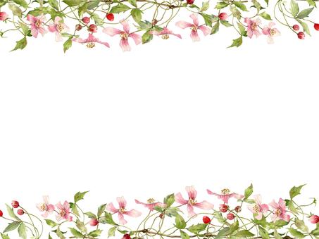 花框架423粉紅色鐵線蓮花框架