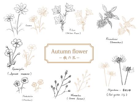 Autumn flowers - Sepia