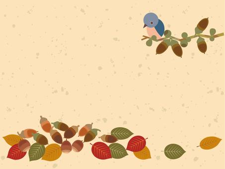 橡子和鳥_卡