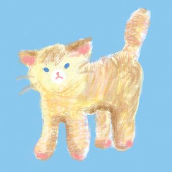 Cat like a stuffed animal