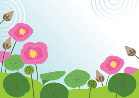 lotus_ lotus 1