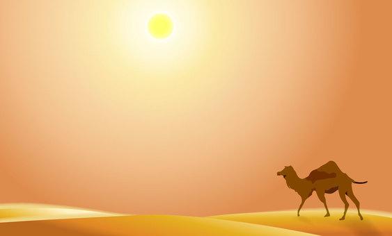 Summer desert 03