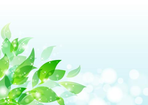 Fresh green material 7