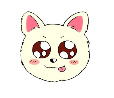 Chihuahuas (face)