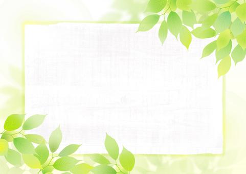 Fresh green frame 01