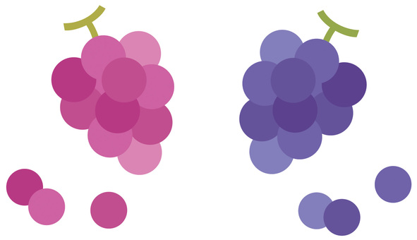 Simple bunch of grapes