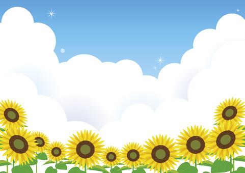 푸른 하늘 해바라기