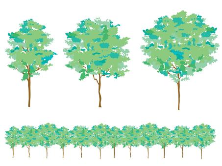 Wood _1