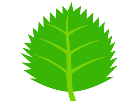 Green leaf (jagged)