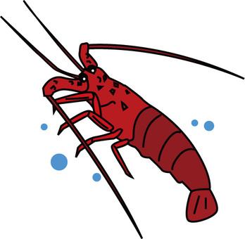 Shrimp Ise 2