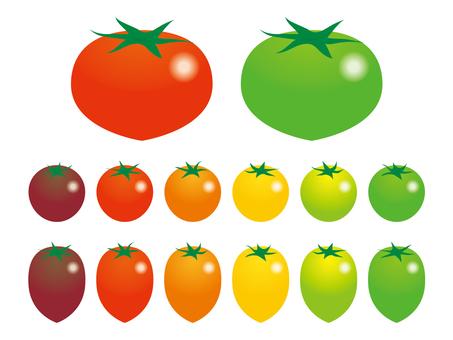 토마토 많이