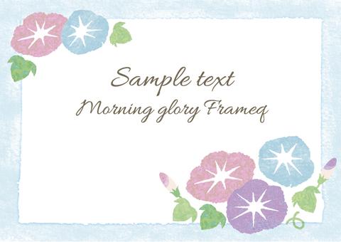 Morning glory 02