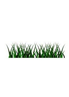 Lawn (deep green)