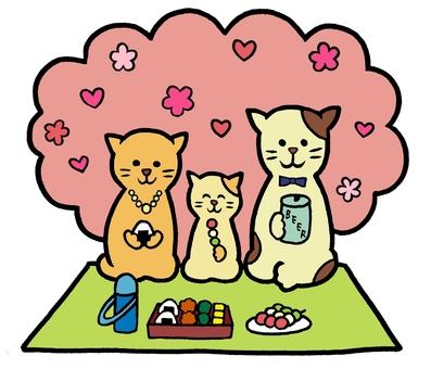 Ohanami猫猫家庭