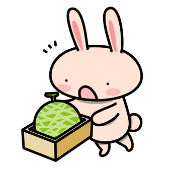 A rabbit who receives a gift (melon ver.)