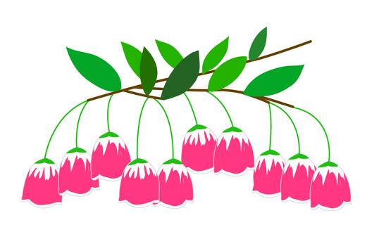 등대 꽃 꽃