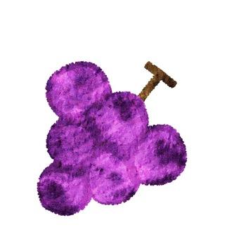 Fruit watercolor style single grape