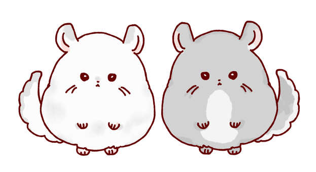 好朋友栗鼠