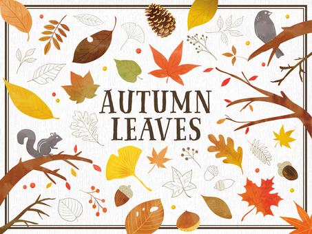 秋の手描き風の植物と動物のセット