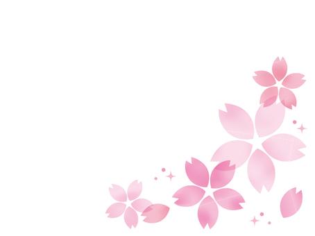 一棵大櫻桃樹