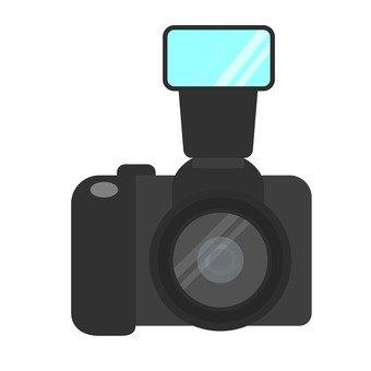 Single lens reflex with strobe