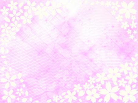 櫻花背景60