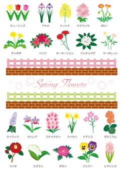春天的花朵集