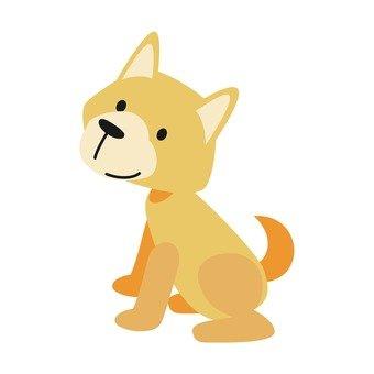 Dog - sitting dog