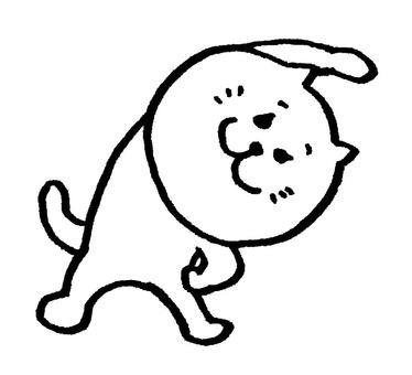 Shiroene cat stretch