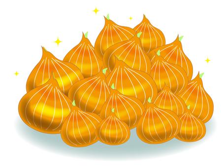 Full of onions!