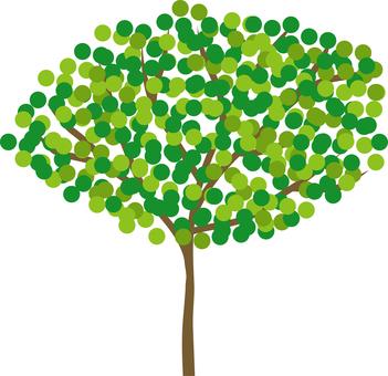 新鮮綠樹2
