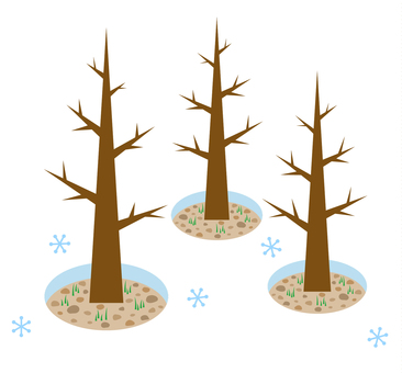 Tree root opening image