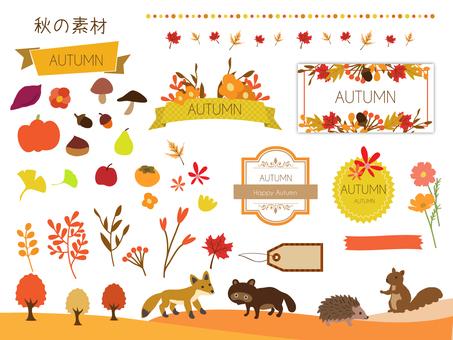 Autumn Material 2