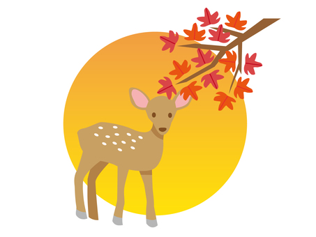 Deer and sunset and autumn leaves