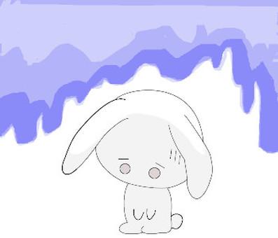 兔子般的性格
