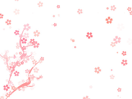 Cherry blossoms background 16