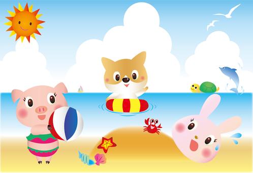 Animal beach bathing