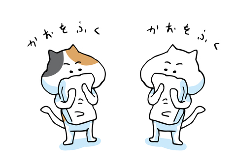 Cat face wipe 07-07