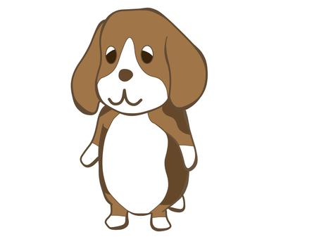 Beagle 01