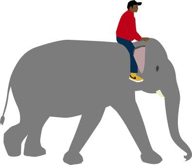 Elephant use