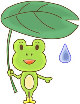 LK animal frog 1