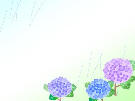 7. hydrangea