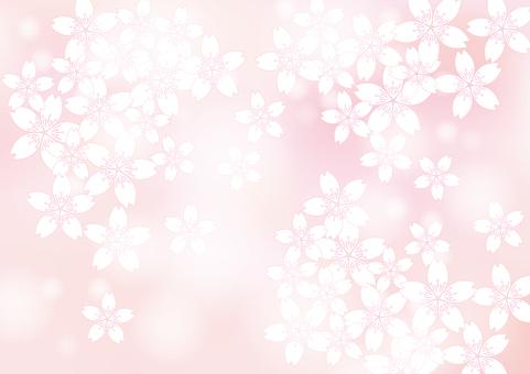 벚꽃 피는 15